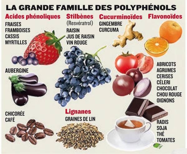 tableau polyphenols